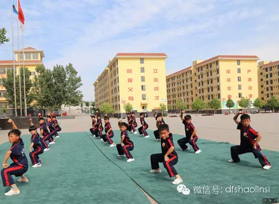 新闻动态 学院新闻         在这里嵩山少林寺武僧团培训基地帮助你图片